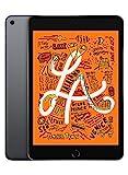 Apple iPad Mini (Wi-Fi, 64GB) - SpaceGrau